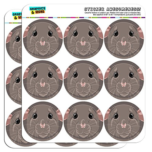 rat-pet-mouse-rodent-2-scrapbooking-crafting-stickers