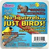 Garden Chic! No Squirrels... Just Birds, 11.25 oz