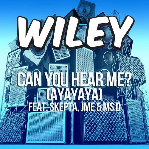 CAN YOU HEAR ME (AYAYAYA)