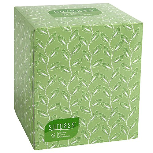 Surpass Boutique Facial Tissue Cube (21320), 2-Ply, White, Unscented, 110 Face Tissue / Box, 36 Boxes / Case (Tissue Box Upright compare prices)