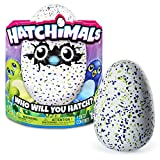 Hatchimals - Hatching Egg - Interactive Creature - Draggle - Blue/Green Egg by Spin Master