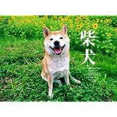 柴犬  カレンダー 2015 ([カレンダー])