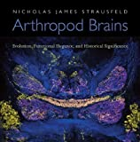 img - for Arthropod Brains: Evolution, Functional Elegance, and Historical Significance by Nicholas James Strausfeld (Jan 2 2012) book / textbook / text book