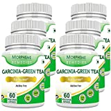 Morpheme Garcinia Green Tea 500mg Extract 60 Veg Caps - 6 Combo Pack