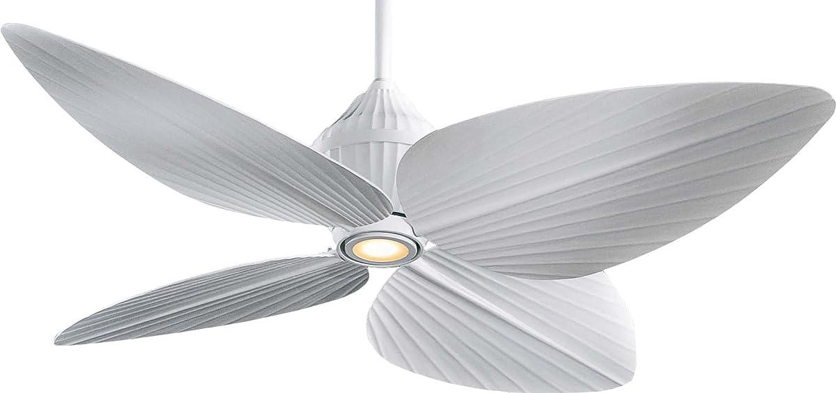 Minka Aire F581 Whf Minka Aire One Light Outdoor Fan Flat