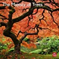The Majesty of Trees Calendars