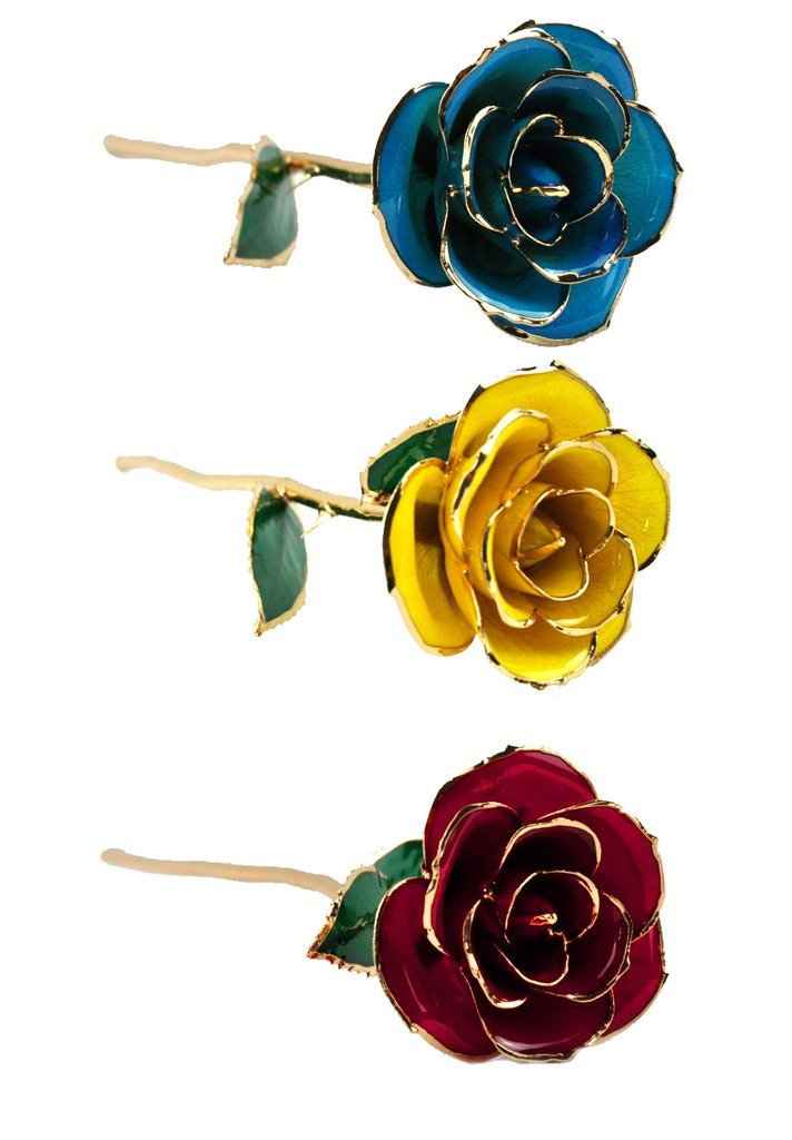 24k Gold Foil Dipped Trim Rose with 'SLAVE ME' Bracelet, Yellow Red Blue, Pack of 3