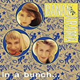 In A Bunch - CD Singles Box Set - 1981-1993