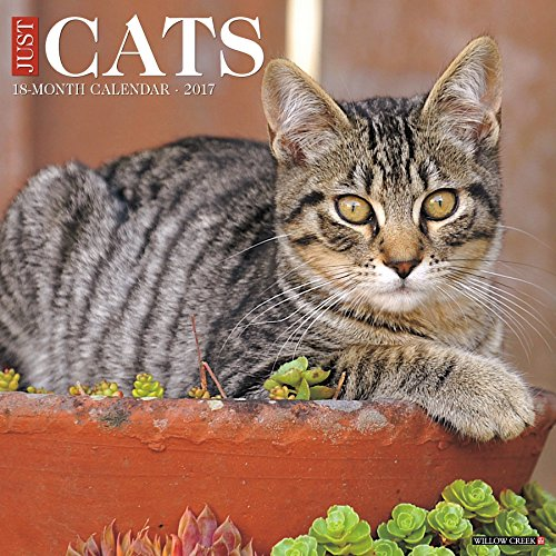 Just Cats 2017 Wall Calendar