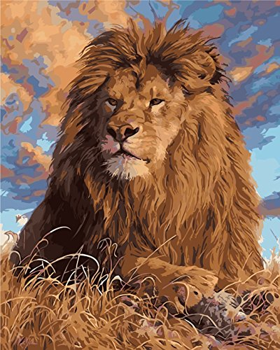 Oil Painting by Number Kits Animal, DIY oil Paint by Number on Canvas The lion king 16x20inch, Unframe)