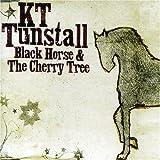Black Horse & The Cherry Tree