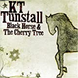 Black Horse & the Cherry Trees