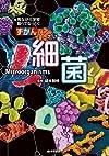 細菌 (ずかん)