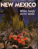 New Mexico Magazine: White Sands, Navajo New Year, Chimayo - October 1995