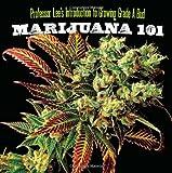 Marijuana 101: Professor Lee's Introduction to Growing Grade a Bud