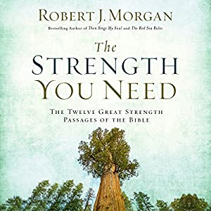 The Strength You Need Audiobook
