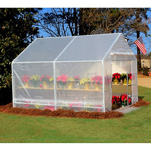 King-Canopy-GH1010-10-Feet-by-10-Feet-Fully-Enclosed-Greenhouse-Clear