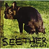 Seether 2002-2013
