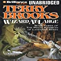 Wizard at Large: Magic Kingdom of Landover, Book 3 Audiobook by Terry Brooks Narrated by Dick Hill