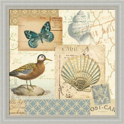 Coastal Collage I By Alain Pelletier Butterfly Bathroom Decor Framed Art Print Picture Wall Décor front-922294