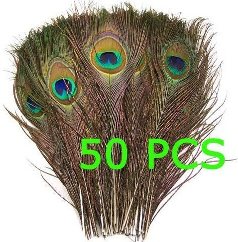 Image 50pcs Natural Peacock Tail Feathers (Big Eyed) about 26-30cm