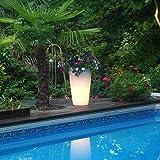 Bon Decor Illuminated Planter Clear with LED