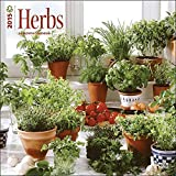 Herbs 2015 Wall Calendar