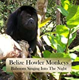 Belize Bruces Howler Monkeys: Baboons Singing Into The Night