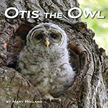Otis the Owl Audiobook by Mary Holland Narrated by Tyler Stoe