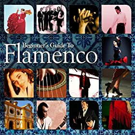 Beginners Guide to Flamenco