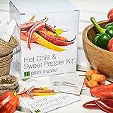 Kit Chili & Paprika von Plant Theatre - 6 verschiedene...