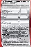 BSN N.O.-XPLODE - Fruit Punch, 2.45 lb (60 servings)