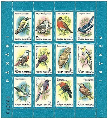 foglietto-di-12-uccelli-diversi-con-nomi-latini-numero-di-serie-originale-12-francobolli-emessi-nel-