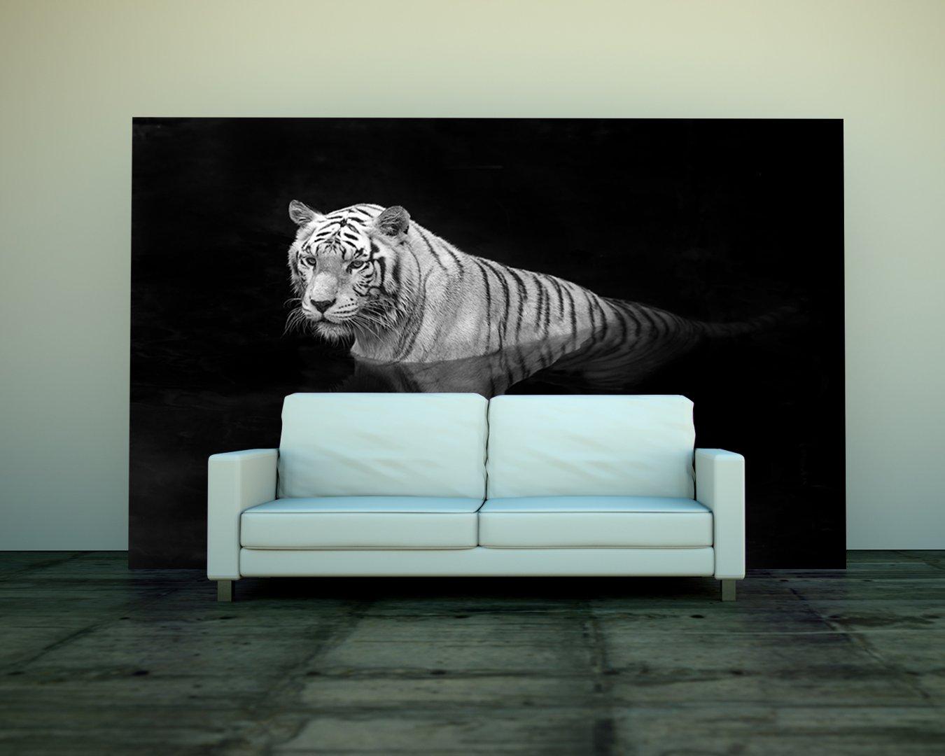 Bilderdepot24 selbstklebende Fototapete Tiger im Wasser  schwarz weiss 310x200 cm  direkt vom Hersteller   Kundenbewertung und Beschreibung