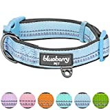 Blueberry Pet Soft & Comfy 3M Reflective Pastel Color Padded Dog Collar, Matching Leash & Harness Available Separately