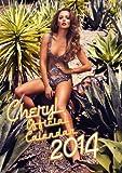 Official Cheryl Cole 2014 Calendar (Calendars 2014)