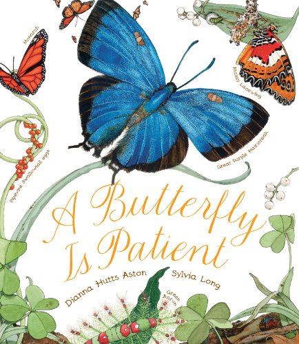 Dianna Hutts Aston - A Butterfly Is Patient