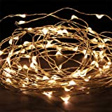 MuchBuy 33Ft Warm White Copper Wire LED Starry Lights - 5V DC LED String Light - Includes Power Adapter - with 100 Individual Leds