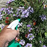 Home-X Two-In-One Watering Can with Sprayer