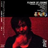 宇宙の花 FLOWER OF COSMIC