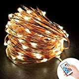 Loende USB Powered Safe Insulation Waterproof Cooper Wire LED Starry String Lights - Great for Garden - Patio - Home - Bedroom - Party - Wedding - Holiday Decor (100 LED 33 Ft Warm White With Remote )