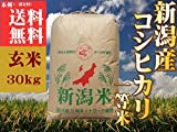 新潟県産 コシヒカリ 平成28年産 検査1等米 玄米 30kg 「玄米色彩選済み」