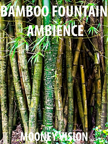Bamboo Fountain Ambience