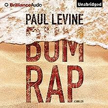 Bum Rap (       UNABRIDGED) by Paul Levine Narrated by Michael Levine