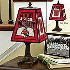 Art Glass Lamp - North Carolina State