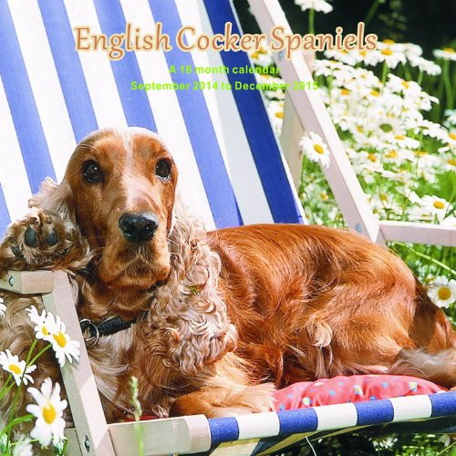 English Cocker Spaniels Calendar - 2015 Wall calendars - Dog Calendars - Monthly Wall Calendar by Magnum