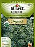 Burpee 60165 Organic Broccoli Green Sprouting Calabrese Seed Packet