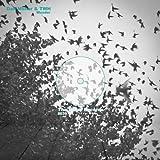 Wonder (feat. TWH) [Instrumental Mix]