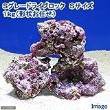 (海水)Sグレードライブロック Sサイズ(1kg)(形状お任せ) 北海道・九州・沖縄航空便要保温