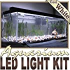 6' ft Cool White Aquarium Fish Tank White LED Lighting Strip + Dimmer + Remote + Wall Plug 110V - Main Lighting, Sub Lighting, Fresh Water Tanks, Salt Water Tanks LED Reading Light Strip Night Light Lamp Bulb Accent Lights SMD3528 Water Resistant 3528 SMD Flexible DIY 110V-220V